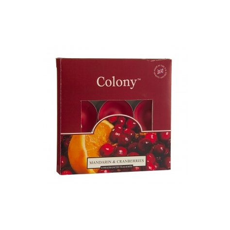 Wax Lyrical Colony T-Lights - Mandarin & Cranberry
