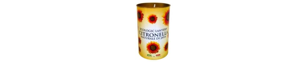 Citronella / Garden Candles